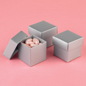 Mix-and-Match Silver Shimmer Favor Boxes